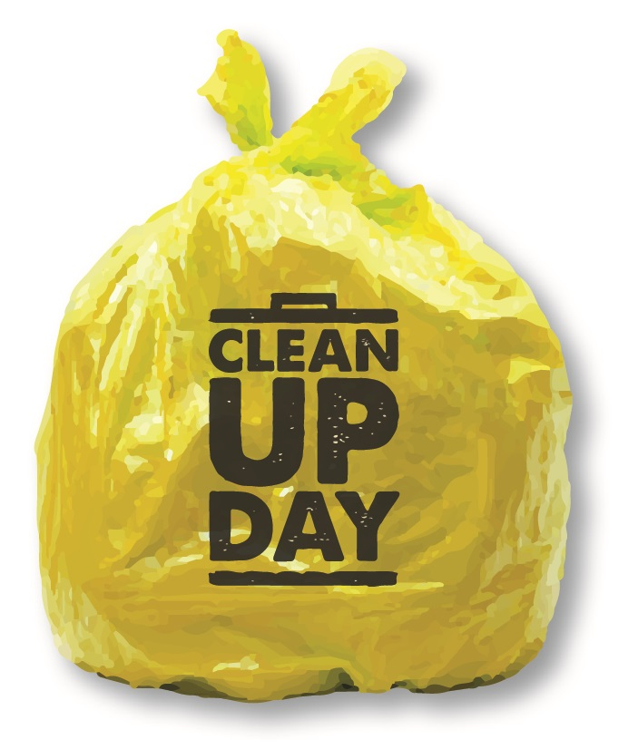 cleanupdaybag
