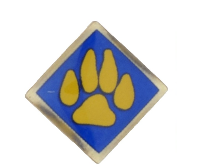CS Activity Pin paw